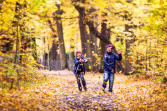 Boys playing with fallen leaves in a park. Autumn in Poland. Stock Photos