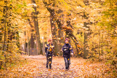 Boys playing with fallen leaves in a park. Autumn in Poland. Royalty Free Stock Image