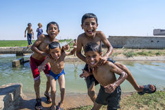 Boys playing in an irragation channel next to the road from Urfa to Harran in eastern Turkey. Royalty Free Stock Photo