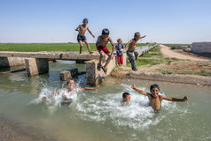 Boys playing in an irragation channel next to the road from Urfa to Harran in eastern Turkey. With summer temperatures reaching upwards of 45 degrees for weeks Royalty Free Stock Photo