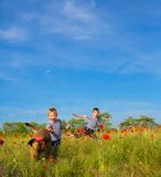 Boys playing on the meadow Stock Images