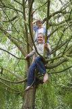 Boys Playing On Tree Branch Royalty Free Stock Photo