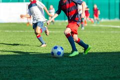 Boys in red blue sportswear running on soccer field. Young footballers dribble and kick football ball in game. Training,. Active lifestyle, sport, children royalty free stock photos
