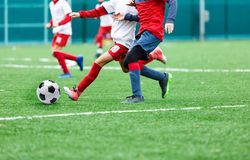 Boys in red and white sportswear plays soccer on green grass field. Youth football game. Children sport competition royalty free stock photos