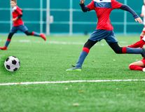 Boys in red and white sportswear plays soccer on green grass field. Youth football game. Children sport competition, kids plays. Outdoor, activities, training royalty free stock photo