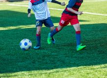Boys in red white sportswear running on soccer field. Young footballers dribble and kick football ball in game. Training. Active lifestyle, sport, children stock image