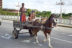 Boys ride by horse and carriage in the street Recife Stock Photography