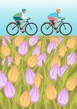 Boys is riding bike on field. Boys is riding bike on spring field Royalty Free Stock Photos