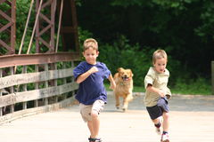 Boys Running. With dog chasing after them Royalty Free Stock Photo