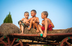 Boys sitting on a hay bale. Happy boys sitting on a hay bale Royalty Free Stock Photo