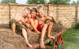 Boys sitting on a hay bale Stock Photography