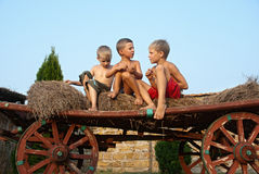 Boys sitting on a hay bale on sky background Stock Images