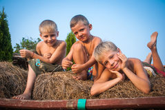 Boys sitting on a hay bale. On sky background Stock Images