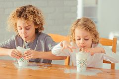 Boys spilling milk. Two little boys spilling milk on the kitchen table royalty free stock photos