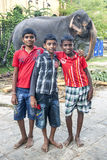 Boys stand in front of a parade elephant within the Temple of the Sacred Tooth Relic complex in Kandy, Sri Lanka. Royalty Free Stock Photo