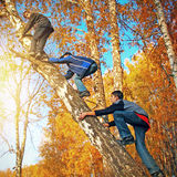 Boys on the Tree Royalty Free Stock Images
