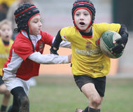 Boys, under 8 aged, red/yellow jacket play rugby Royalty Free Stock Images