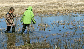 Boys walking thru the swamp. Two boys are walking thru the swamp with their rubber boots Stock Photo