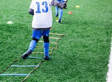 Boys in white and blue football sport form make exercises on green field. Football for children, active lifestyle. Training. Dribble skills stock images