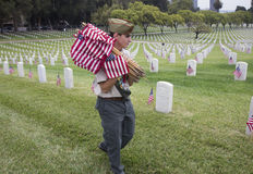 Boyscout plaçant 85, 000 drapeaux des USA à l'événement annuel de Memorial Day, cimetière national de Los Angeles, la Californie, Photos libres de droits