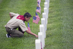 Boyscout places one of 85, 000 US Flags at 2014 Memorial Day Event, Los Angeles National Cemetery, California, USA Royalty Free Stock Images