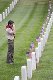 Boyscout places one of 85, 000 US Flags at 2014 Memorial Day Event, Los Angeles National Cemetery, California, USA Stock Image