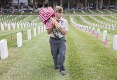 Boyscout que coloca 85, 000 bandeiras no evento anual de Memorial Day, cemitério nacional dos E.U. de Los Angeles, Califórnia, EU imagens de stock