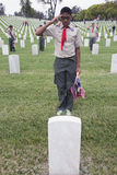Boyscout saluting for one of 85, 000 US Flags at 2014 Memorial Day Event, Los Angeles National Cemetery, California, USA Royalty Free Stock Image