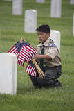 Boyscout setzt eins von 85, 000 US-Flaggen bei Memorial Day -Ereignis 2014, Los Angeles-nationaler Friedhof, Kalifornien, USA stockfotos
