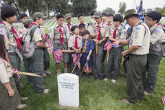 Boyscouts plaçant 85, 000 drapeaux des USA à l'événement annuel de Memorial Day, cimetière national de Los Angeles, la Californie Images stock
