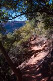 Boyton Canyon Trail No. 47 Royalty Free Stock Images