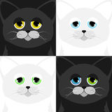 Bozal de cuatro gatos en un estilo de la historieta Ilustración del Vector