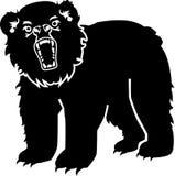 Boze grizzly Royalty-vrije Stock Foto's