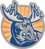 Boze Retro Amerikaanse elandenmascotte Royalty-vrije Stock Foto