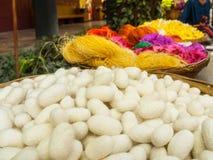 Bozzoli del baco da seta, Tailandia Fotografie Stock Libere da Diritti
