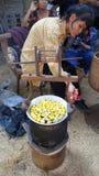 Bozzoli di seta per il filo della seta di filatura Fotografie Stock