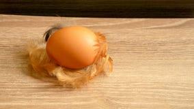 Brązu kurni jajka i kurczak upierzają na drewnianym stole, zbliżenie fotografia zdjęcie royalty free