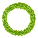 Bräde för ram för krans för växtbladsidor grönt Arkivbild