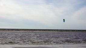 Bräde med en hoppa fallskärm i havet lager videofilmer