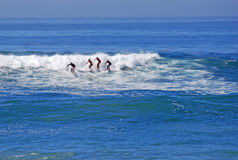 Brädesurfare på bäckgatan sätter på land, Laguna Beach Arkivbilder