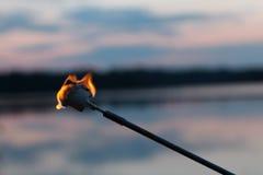 Bränd marshmallow Arkivfoto
