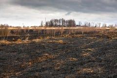 Bränd till kol ängsvart arkivbilder