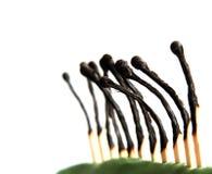 brända matchsticks Royaltyfri Bild