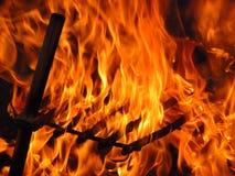 bränna Arkivfoto