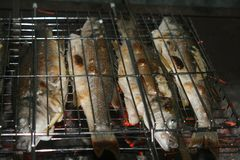 Bränna till kol den grillade hela fisken arkivfoto