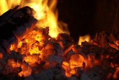 bränna till kol live Royaltyfri Foto