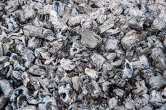 Bränna till kol och askaen, grillfesten, slut upp Fotografering för Bildbyråer