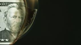 Brännande femtio dollar sedel stock video
