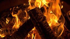 Brännande journaler, brand, flamma, lägereld som är varm, natt som är varm, natt, bakgrund arkivfilmer