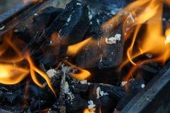 Brännande kol Arkivbild